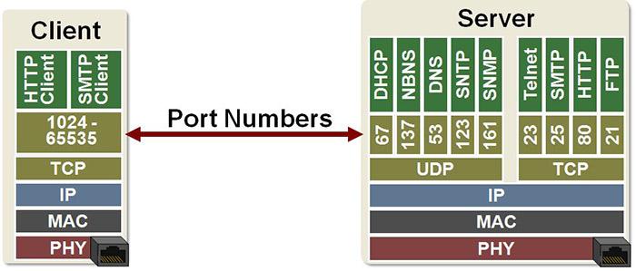 معرفی پروتکل TCP و UDP و کاربرد پورت در آن ها